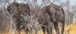 Elephants II - Kruger Park | 2019 | Oil on Canvas | 36 x 51 cm