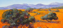 Namaqua National Park | 2020 | Oil on Canvas | 36 x 51 cm