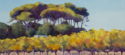 Groot Constantia Autumn Vines | 2020 | Oil on Canvas | 36 x 51 cm