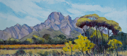 Groot Drakenstein, Boschendal | 2018 | Oil on Canvas | 40 x 60 cm