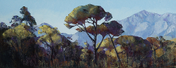 Treescape - Franschhoek Valley | 2018 | Oil on Canvas | 28 x 70 cm