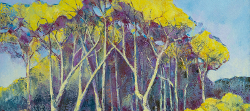Fever Tree Forest, North Kruger | 2019 | Oil on Canvas | 44 x 62 cm