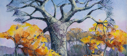 Baobab & Mopani Trees, Kruger Park | 2019 | Oil on Canvas | 36 x 51 cm