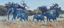 Elephants leaving Waterhole - Etosha | 2014-15 | Oil on Canvas | 34 X 68 cm