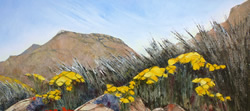 Spring – Goegap Nature Reserve near Springbok | 2012 | Oil on Canvas | 57 x 81 cm