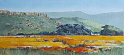 Biedouw Valley - Namaqualand | 2014 | Oil on Canvas | 30 x 43 cm