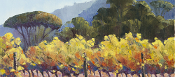 Autumn Vines - Delheim Estate | 2016 | Oil on Canvas | 42 x 60 cm