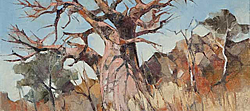 Baobab Study 4 - Mapungubwe National Park | 2011 | Oil on Canvas | 40 x 54 cm