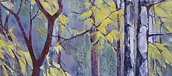 Nature's 'Stained Glass Window' - Silver Birches 2 | 2013 | Oil on Canvas | 64 x 46 cm