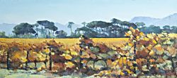Autumn Vineyards - Paarl District | 2013 | Oil on Canvas | 40 X 70 cm