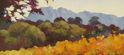 Autumn Vines - Groot Constantia | 2019 | Oil on Canvas | 46 x 64 cm