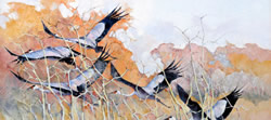 Wattled Cranes – Etosha | 1996 | Oil on Canvas