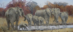 Elephants at the Waterhole - Kruger Park | 2014 | Oil on Canvas | 40 X 67 cm