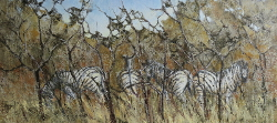 Zebra - Kruger Park | 2019 | Oil on Canvas | 38 X 71 cm